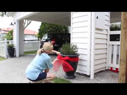 How to Tie a Bow around a Potted Plant