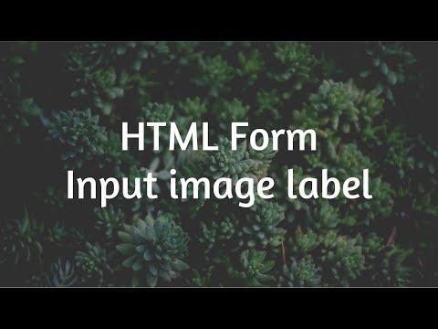 HTML Input de choix d'une image (radio - checkbox)