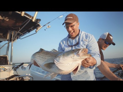Finding Schools of Striped Bass on MEGA Side Imaging