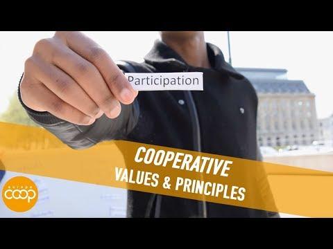 Cooperative Values & Principles