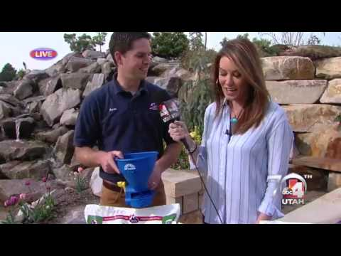 IFA Country Stores on Good4Utah
