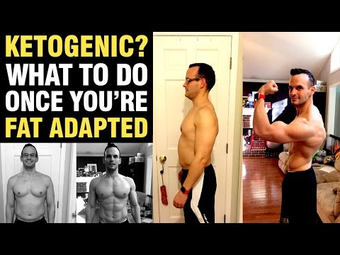 Are You In Ketosis or Fat Adapted Yet? If So, What Should You Do Next?