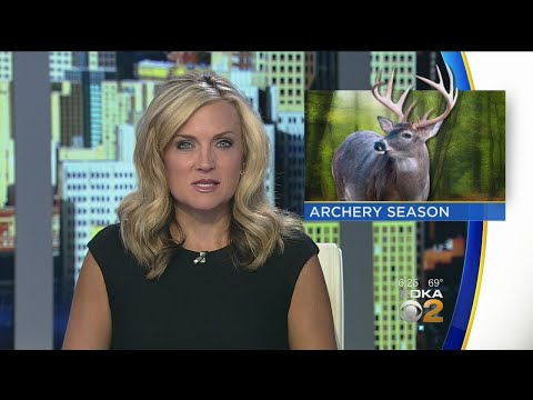 Hunting Licenses Available Online As Deer Season Approaches