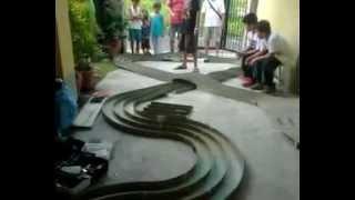 Tamiya Mini 4wd (Technical Race) Legazpi City, Albay