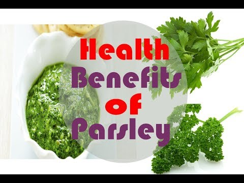 What are the Health Benefits of Parsley - Parsley as Health Remedy - Medical Benefits of Parsley