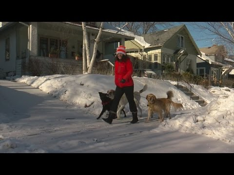 Bitter Cold Doesn't Scare Those Seeking Outdoor Exercise