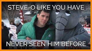 Steve-O Like You Have Never Seen Him Before
