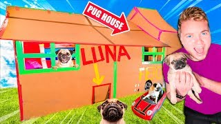 TWO STORY BOX FORT DOG HOUSE FOR PUG PUPPY! 📦🐶
