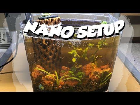 1 Gallon Nano Aquarium SetUp!