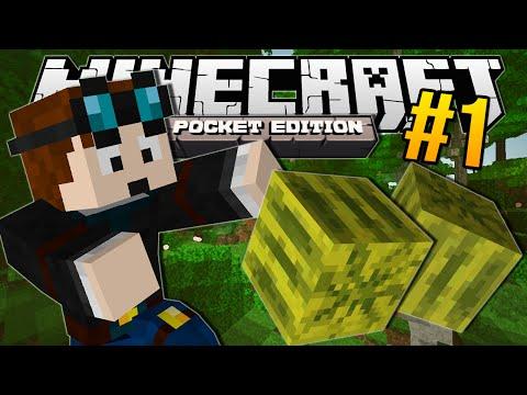 Minecraft Pocket Edition | MELON JUNGLE!! | #1