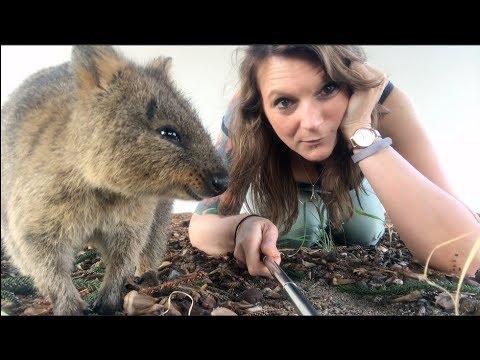 Exploring Rottnest Island in Western Australia