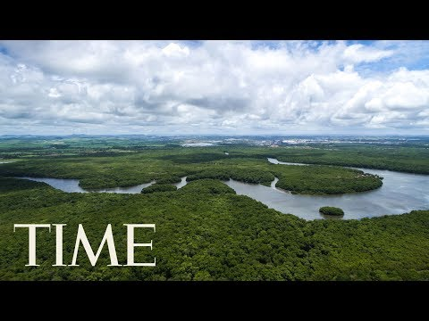 Norway Threatens To Cut Funds To Brazil Unless Deforestation In The Amazon Slows Down | TIME