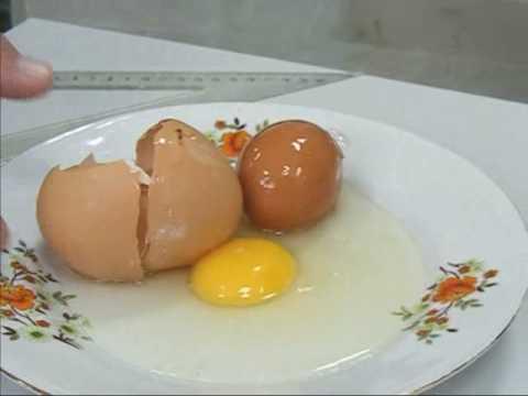 Double Egg - 2 eggs in 1!  Mutant!