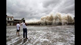 Typhoon Hato In Macau , 10 Meter High Waves In Hong Kong, China Storm