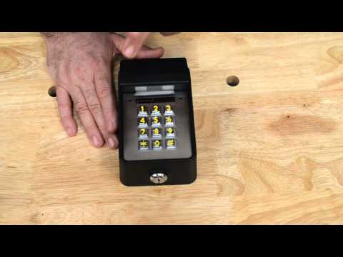 Linear Access Wireless Commerical Gate Digital Keypad