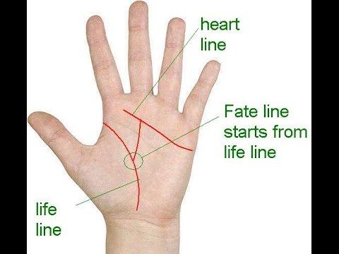 कितना होगा आपका जीवन ? || hast rekha gyan in hindi || life line