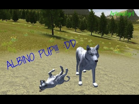 WolfQuest ~I got an Albino Pup!!~ -How to get an Albino Pup!!-