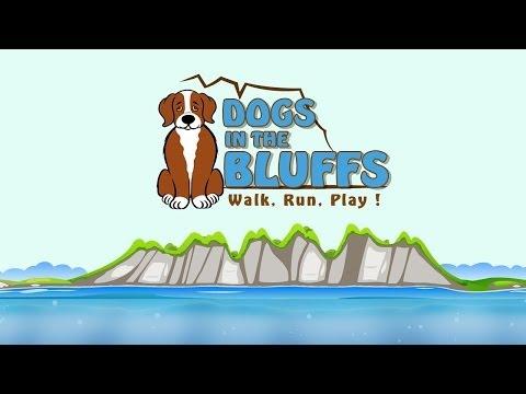 Dog Walker Scarborough. Professional Dog Walking Scarborough Bluffs.
