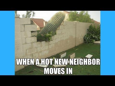 Funny Neighbor Meme