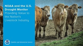 NOAA and the U.S. Drought Monitor: Providing Value to the Nation's Livestock Industry