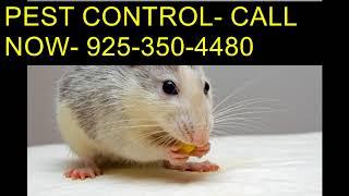 Download Call 925.350.4480 Scorpion Treatment Company Clovis CA Video