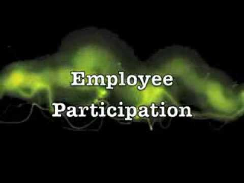 1 Employee Participation