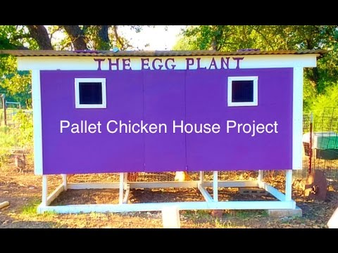 How to Build a Pallet Chicken House - Start to Finish