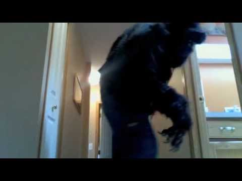 My Homemade Werewolf Costume