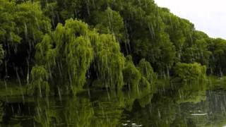 Download Вальс дождя Video