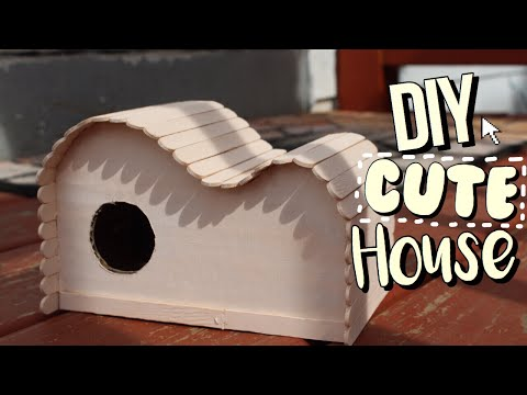 DIY Cute Rodent House! 💛  Pet Rodents