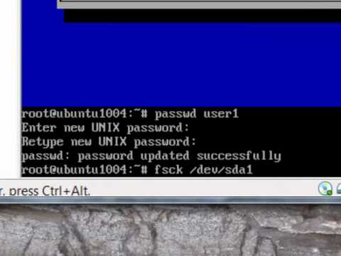Repair Ubuntu running in a Virtual Machine