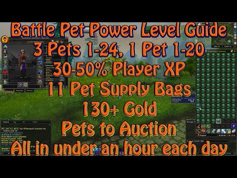 Battle Pet Power Leveling Guide: 1 Hour A Day For Big Rewards