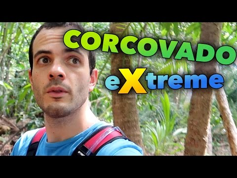 CORCOVADO NATIONAL PARK TOUR GUIDE - DAILY TRAVEL VLOG #160