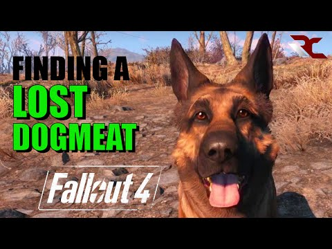 Fallout 4 | How to Find a Lost Dogmeat/Companion (Fallout 4 Guides)