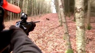 Best of wild boar hunting | Top kill shots compilation - Ultimate Hunting