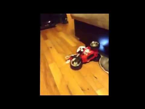 New toy cars that move by its self