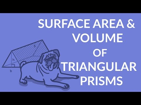 ʕ•ᴥ•ʔ Easy formula for the Surface Area and Volume of a Triangular Prism