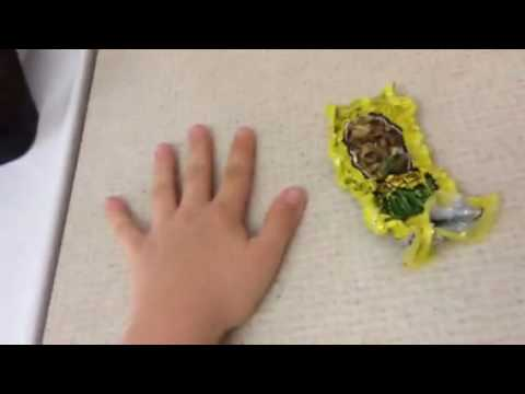Shrinking A Bag Of Chips