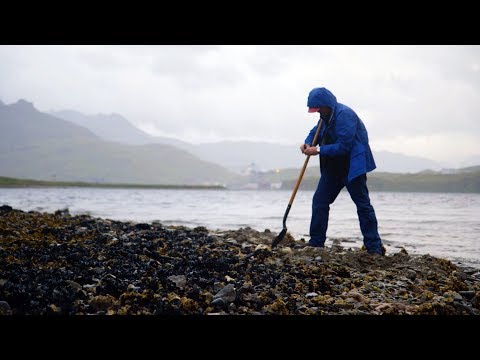 Digging for butter clams in Dutch Harbor, Alaska