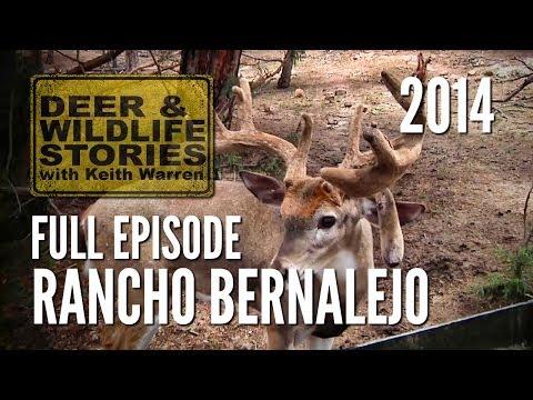 Rancho Bernalejo - Wildlife Conservation Down Mexico Way