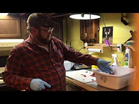 White tail deer processing