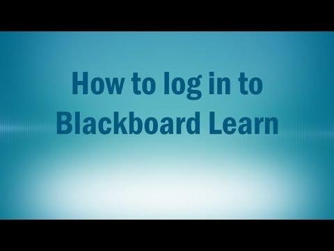 Log in to Blackboard Learn
