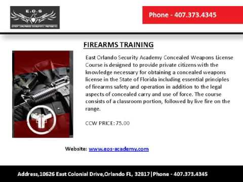 Concealed carry florida