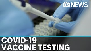 CSIRO begins first stage testing of new possible vaccine | ABC News