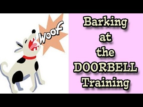Barking at the Doorbell: Dog Training