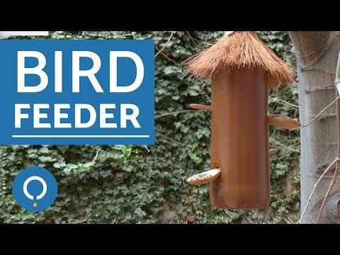 How to make a  DIY bird feeder - DIY for PETS
