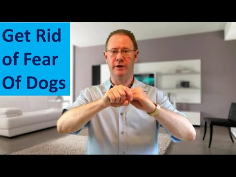 How To Get Rid Of Fear of Dogs - Crazy Fast Phobia Cure. Try EFT Now - Energy Healing
