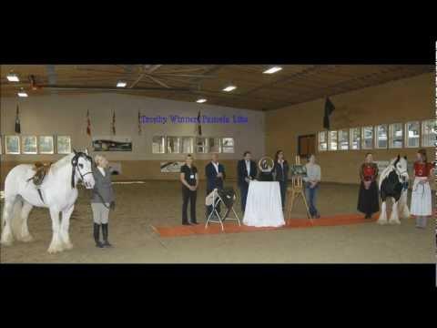 Gypsy Vanner Horse Trophy Sculpting Steps 2011 HD