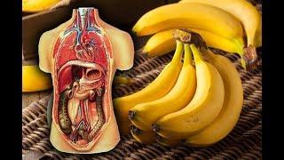 هل تعلم ماذا يحدث لجسمك إذا داومت على أكل موزتين في اليوم !