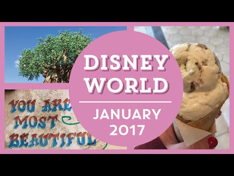 DISNEY WORLD VLOGS | JAN 2017 | Day 6 - Animal Kingdom, Boardwalk, & Epcot